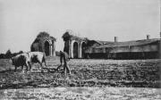 Absidioles de l'église abbatiale et mur Nord de l'abbaye en arrière-plan