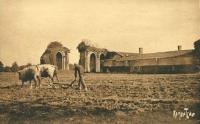 Cartes postales de l'abbaye